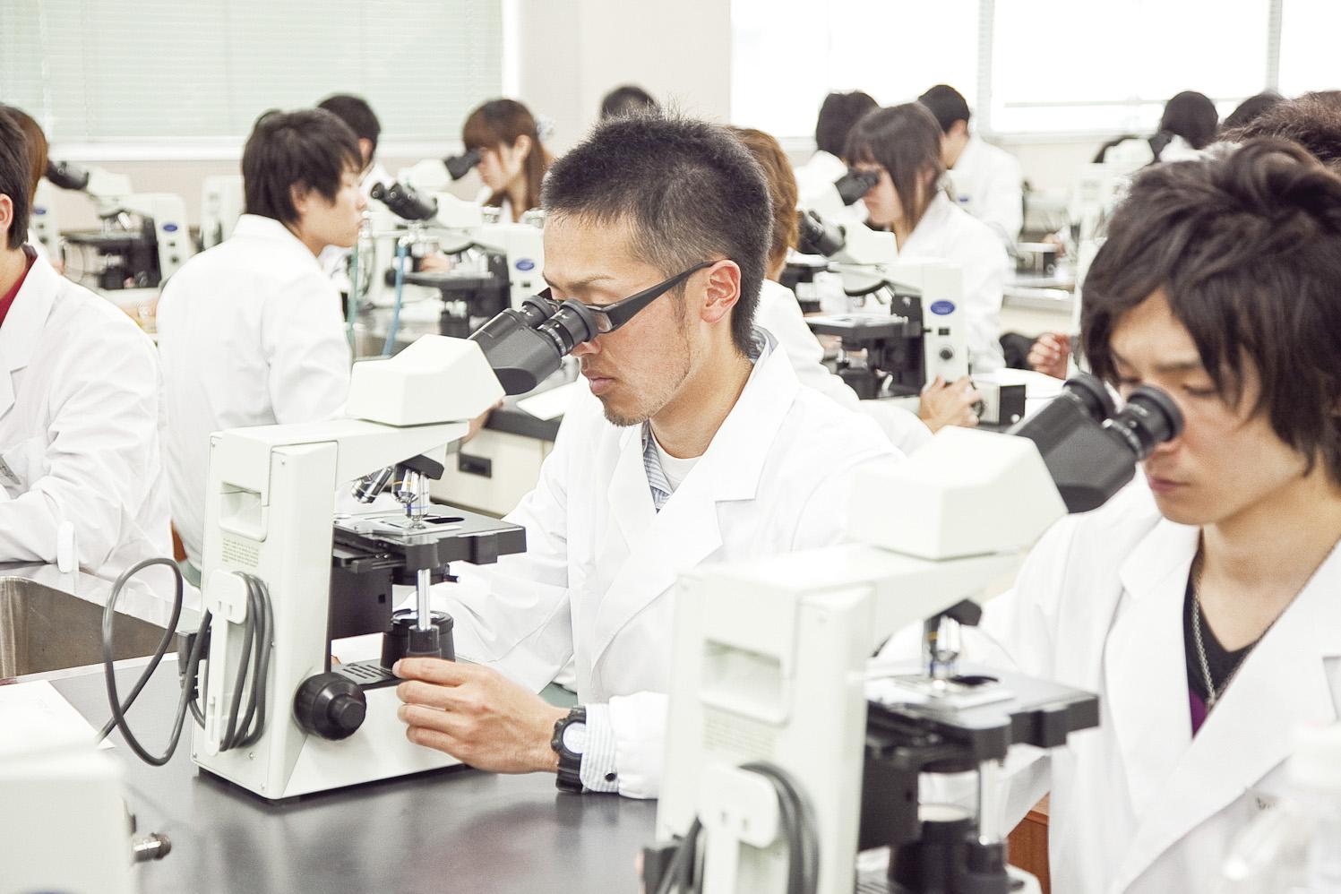 顕微鏡で研究をする学生